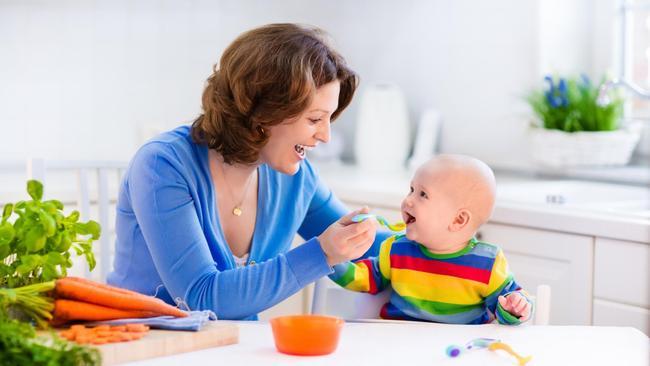 8 Pilihan Bahan Mpasi Untuk Bayi 7 9 Bulan