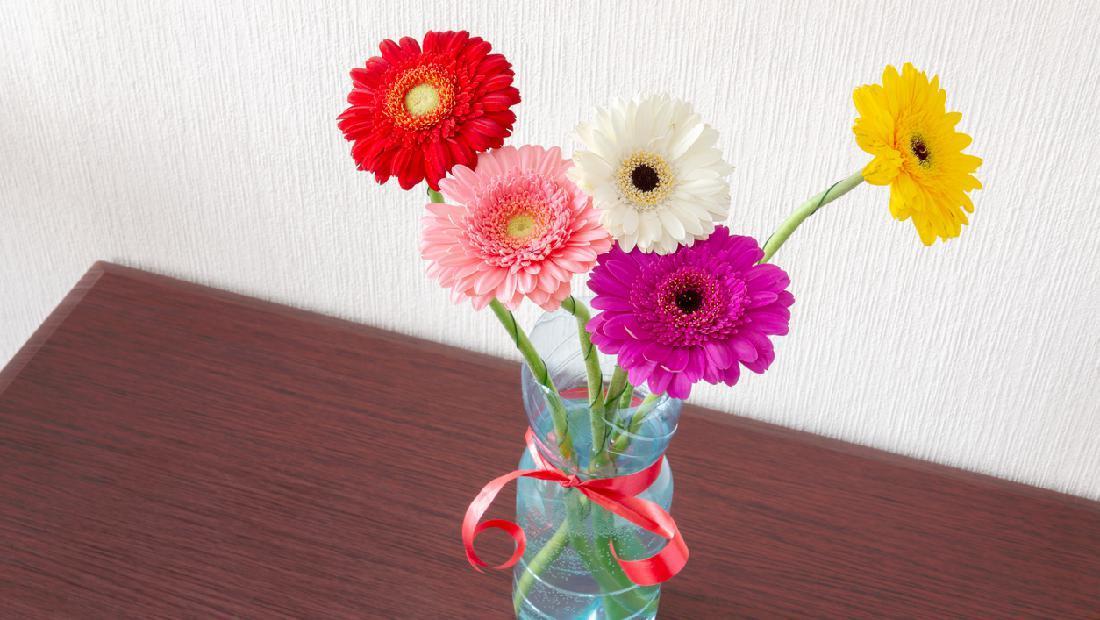 5 Cara Membuat Vas Bunga Dari Botol Plastik Mudah Dibuat Di Rumah