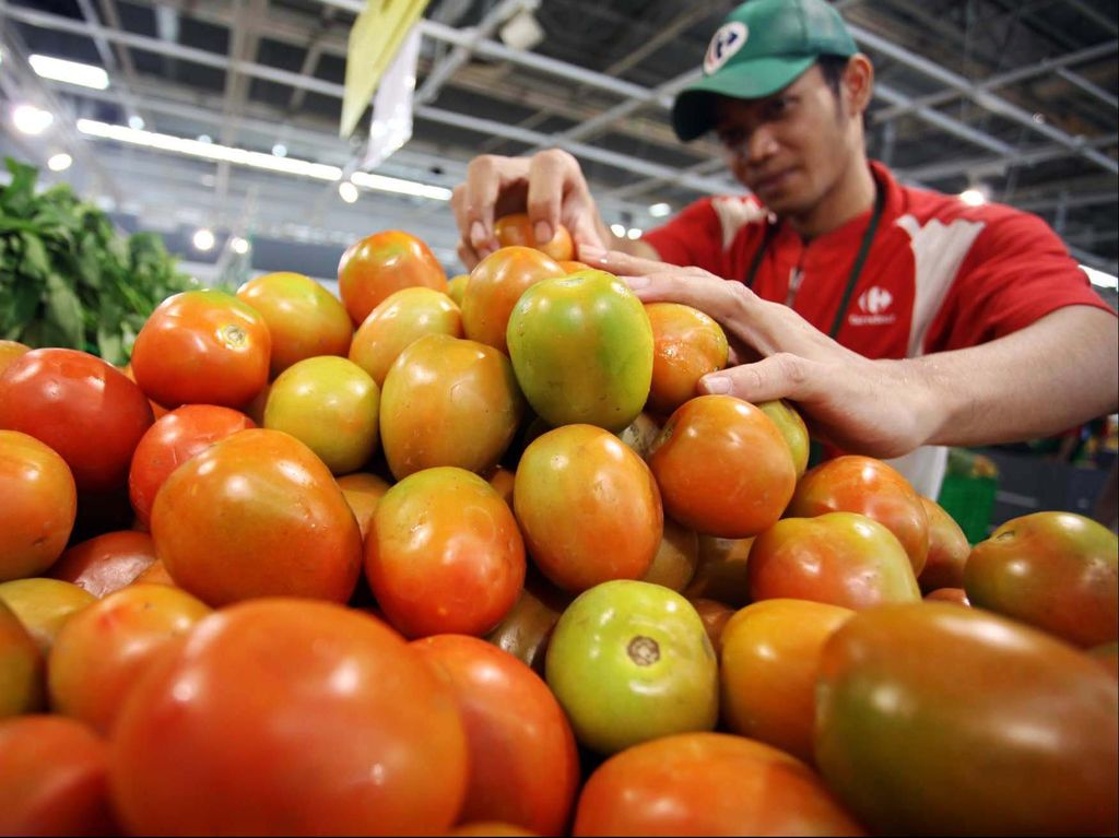 Peneliti Uji Coba Suplemen Tomat untuk Atasi Kemandulan Pria