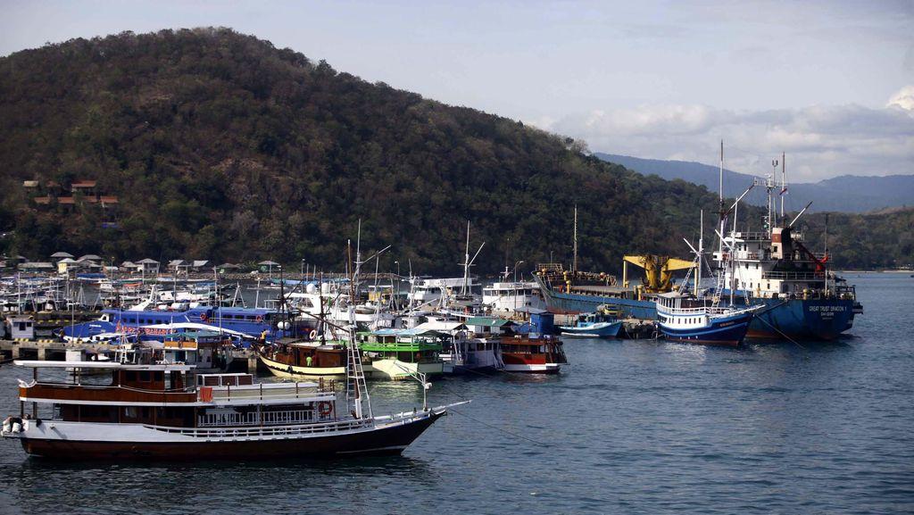 Kemenko Kemaritiman: RI Masih Kekurangan 5.000 Kapal Besar