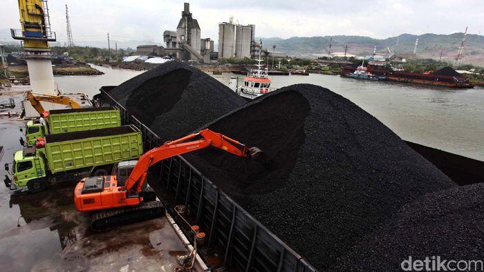 Impor Elpiji Capai Rp 5 T, Menteri Jonan Perintahkan Gunakan Bahan Baku Gas Batubara
