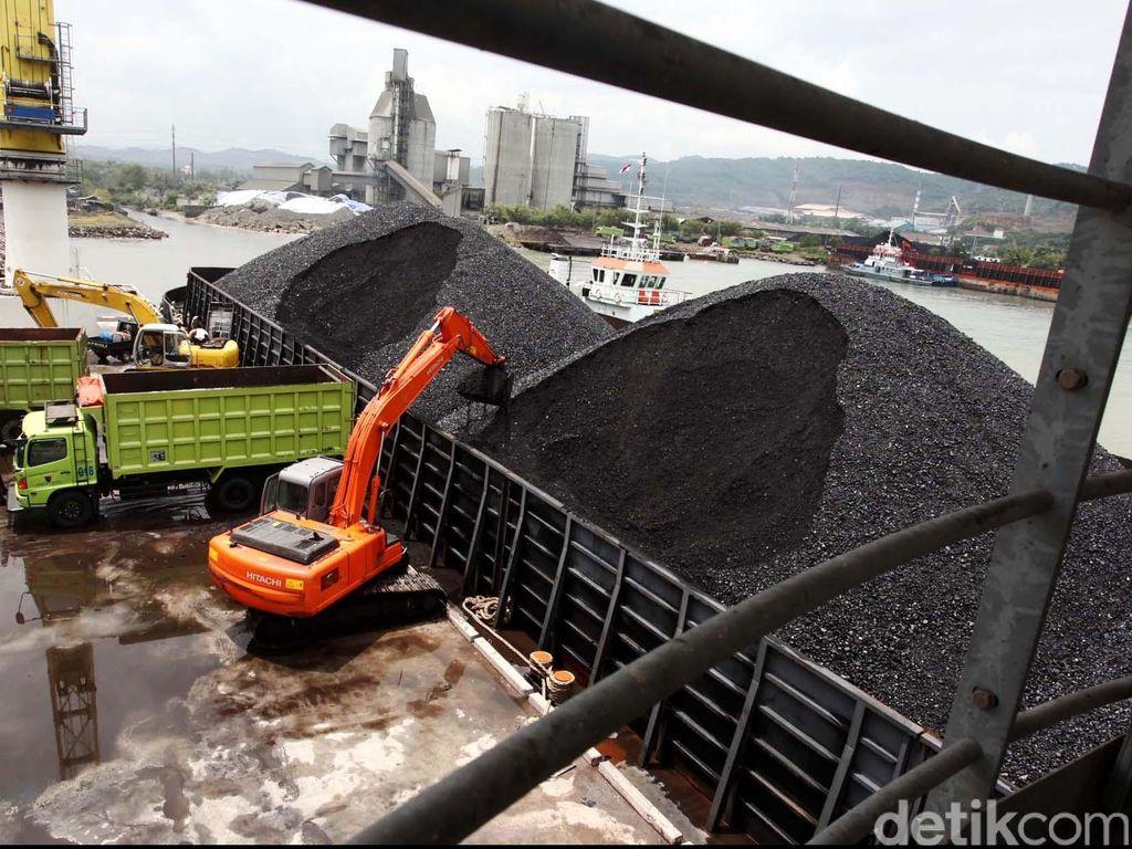 Tekan Impor, PTBA hingga Pertamina Ubah Batu Bara Jadi Gas
