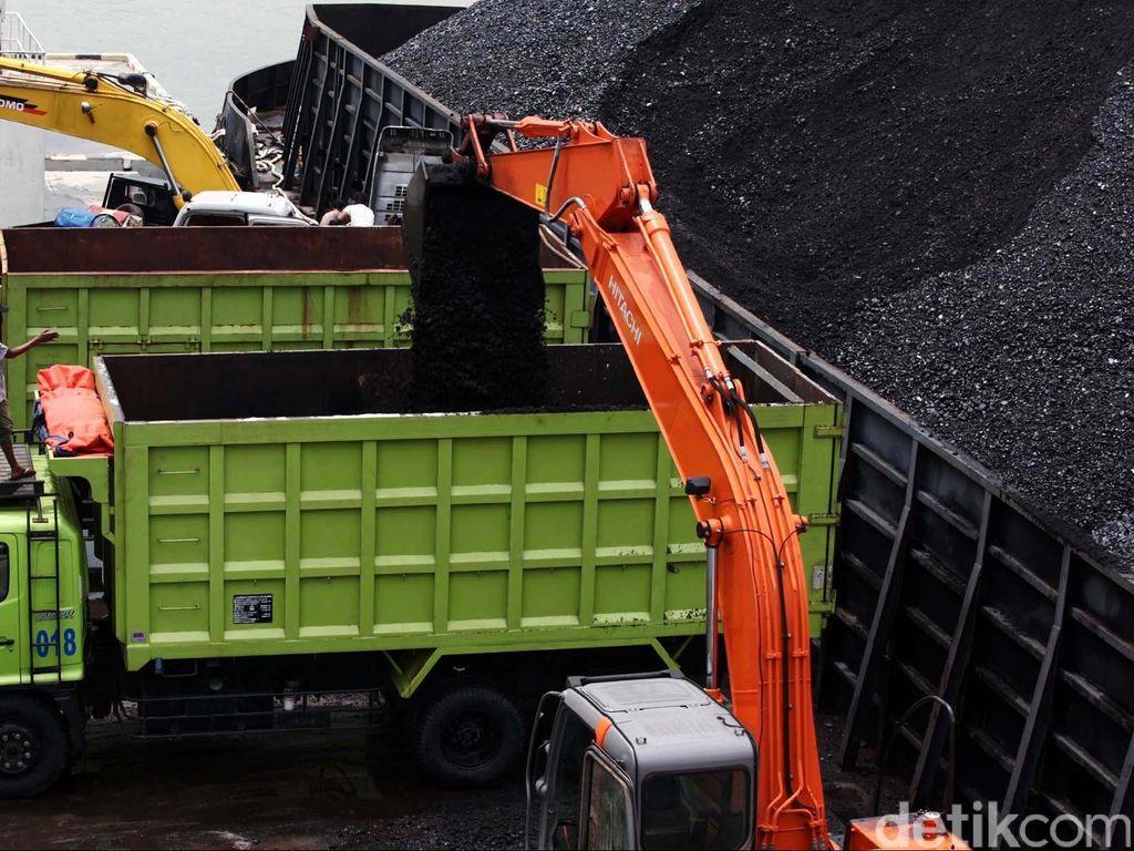 Mantap! Batu Bara Bisa Jadi Gas untuk Kompor LPG