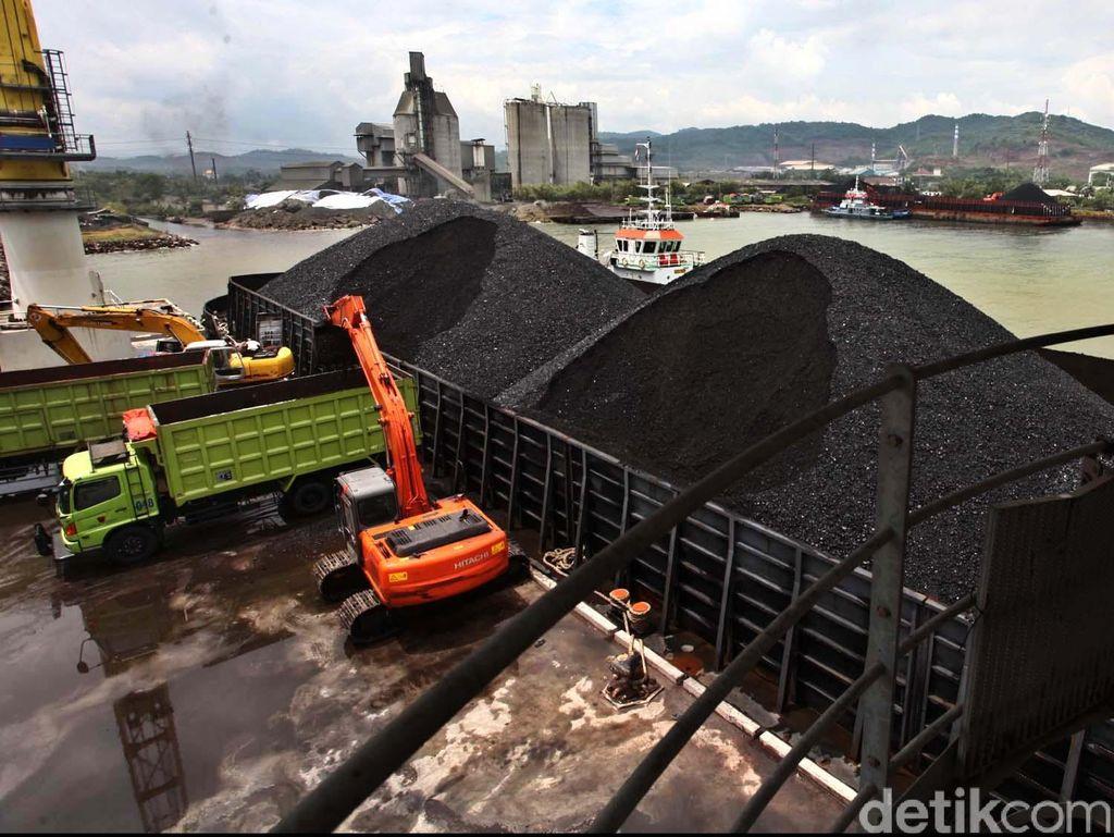 Utang Triliunan dan Anjloknya Harga Batu Bara Bikin Berau Terkapar