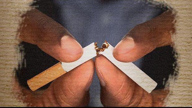 Cover Fokus Rokok