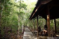 15 Destinasi Wisata Karimun Jawa yang Wajib Kamu Coba