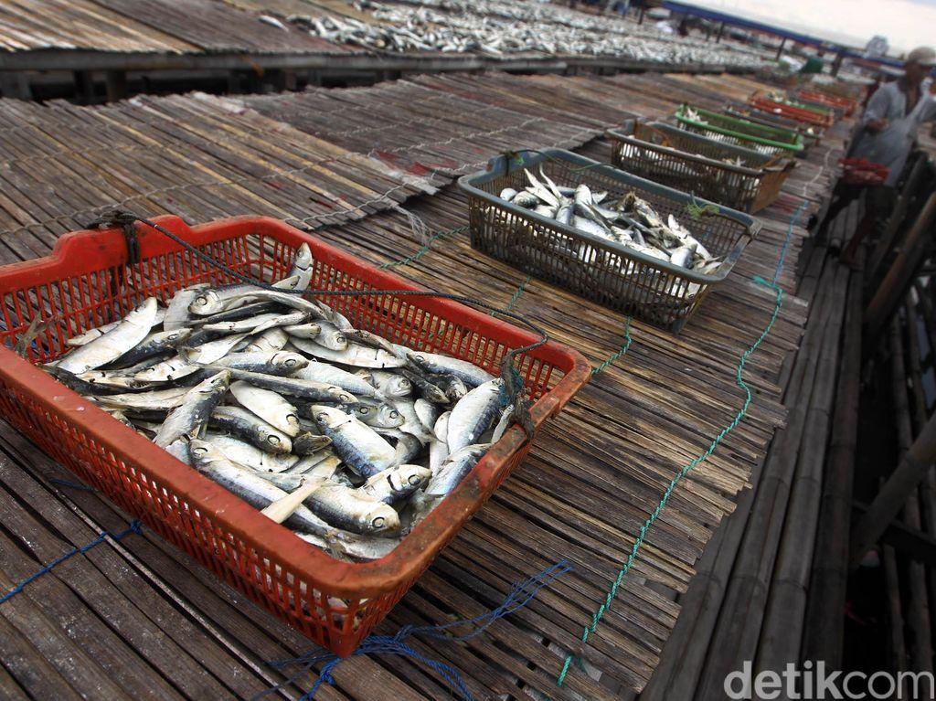 Singgung Ikan Asin, Menkes Ingatkan Risiko Stroke dan Serangan Jantung