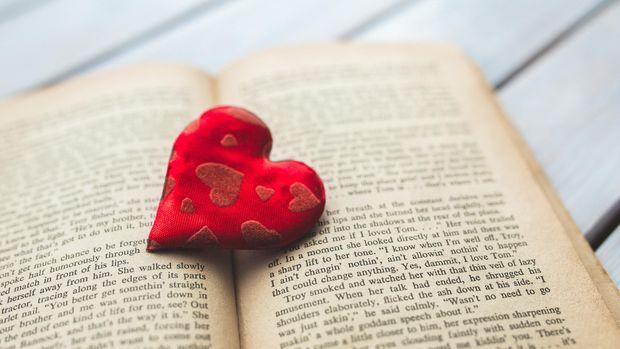 Ilustrasi novel romantis
