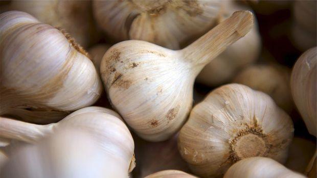 Pilihan Bahan Herbal untuk Atasi Diebetes Hingga Hipertensi