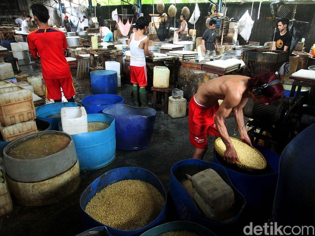Negara Mana yang Jadi Pemasok Kedelai Impor ke RI?