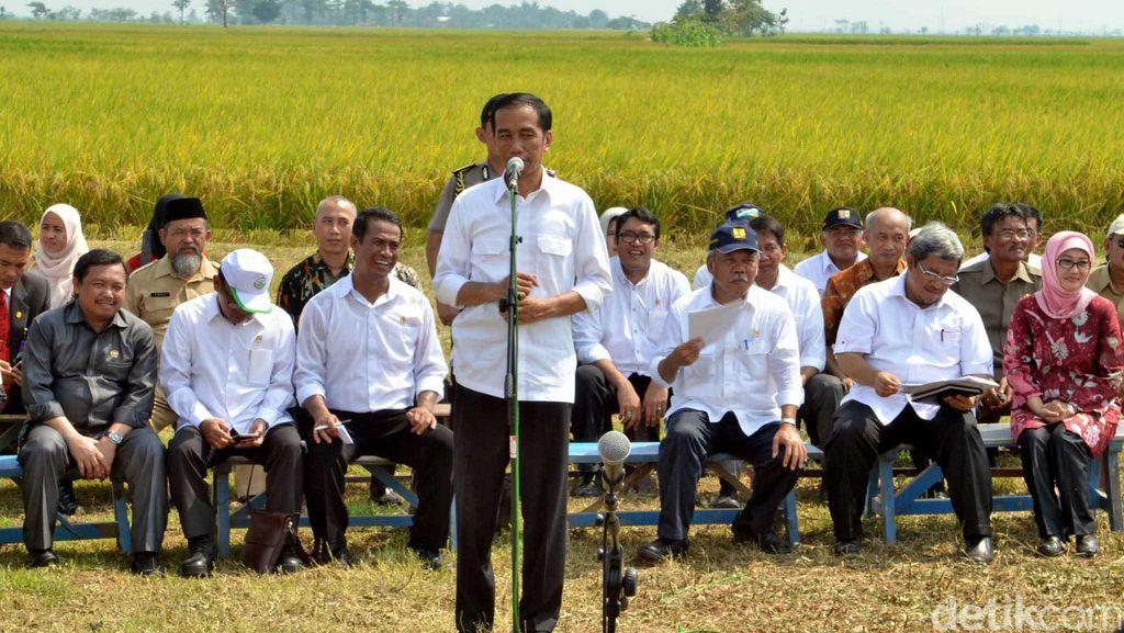Pujian Jokowi ke Mentan: Rela Siapkan Uang Pribadi Untuk Amankan Harga Bawang