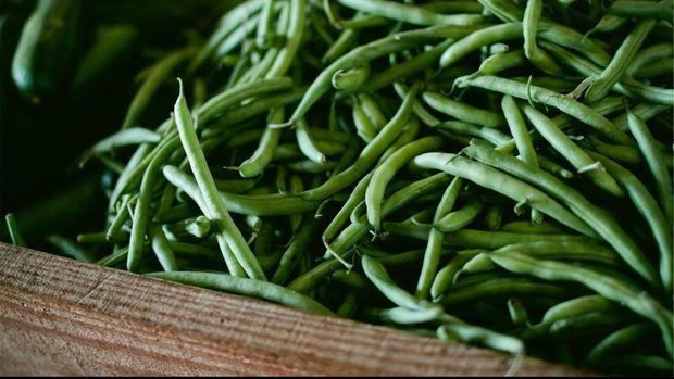 Ilustrasi Sayur Buncis