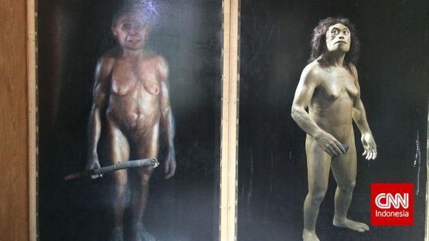 Manusia purba homo floresiensis yang ditemukan di wilayah desa Liang Bua, Kecamatan Ruteng Utara, Kabupaten Manggarai, Flores, Nusa Tenggara Timur.
