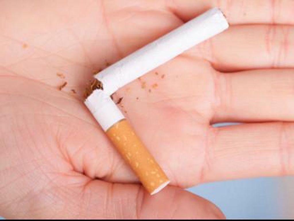 Penting! 5 Langkah Berhenti Merokok Menurut Dokter Paru