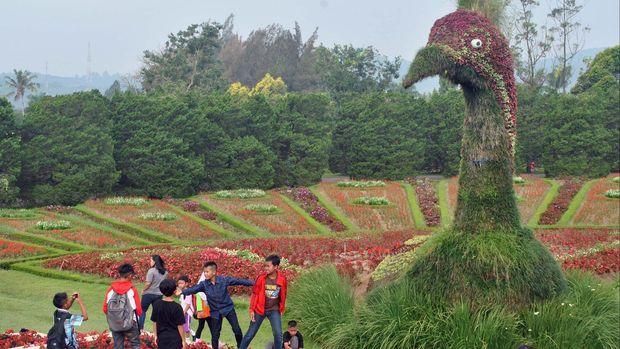 Sejumlah pengunjung berada di Taman Bunga Nusantara, Desa Kawungluwuk, Cianjur, Jabar, Senin (15/6). Taman yang memiliki kekayaan flora khususnya bunga dan tanaman hias lokal dan manca negara itu menjadi tujuan wisatawan lokal dalam mengisi liburan sekolah dan jelang Ramadan. ANTARA FOTO/Arif Firmansyah/Spt/15