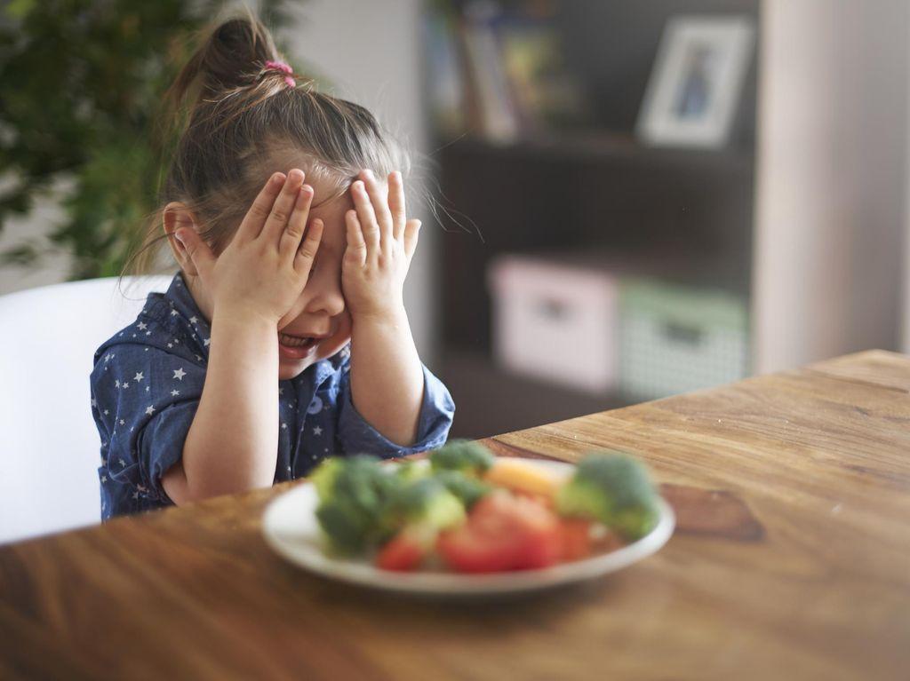 Berapa Sih Kebutuhan Serat Anak Perhari?