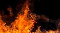 23 Orang Tewas dalam Kebakaran di Bar Meksiko