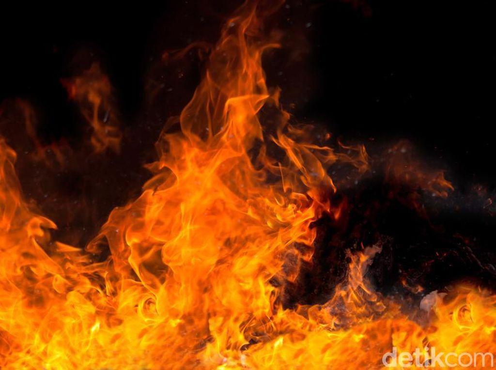 Pul Bus Primajasa Tangsel Kebakaran, 12 Mobil Damkar Dikerahkan