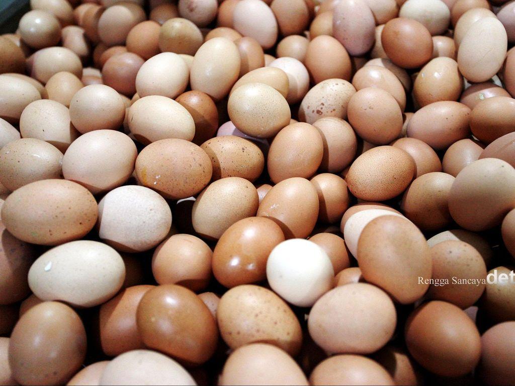 Mendag Sebut Piala Dunia hingga Pilkada Bikin Harga Telur Naik