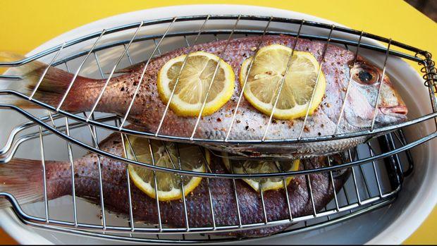 Ilustrasi Ikan Mentah