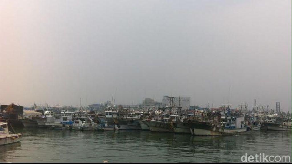 TKI Nelayan di Korea Selatan Minta Pengiriman TKI Sektor Perikanan Disetop