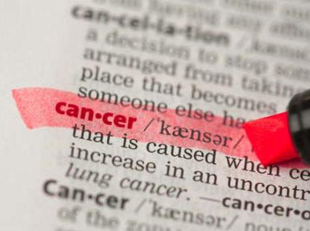 Dokter Gunakan Virus Herpes untuk Melawan Kanker Otak