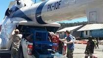 Biaya Angkut Mobil ke Kabupaten Puncak Papua Sama dengan Harga Belinya