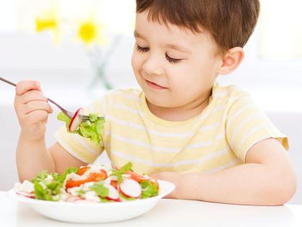 Bisa Dicoba Bun, Tips dari Bu Dokter Agar Anak Lahap Makan