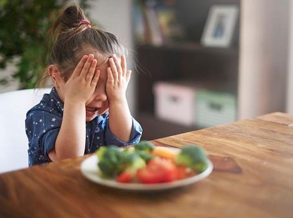 Menghadapi Anak yang Picky Eater