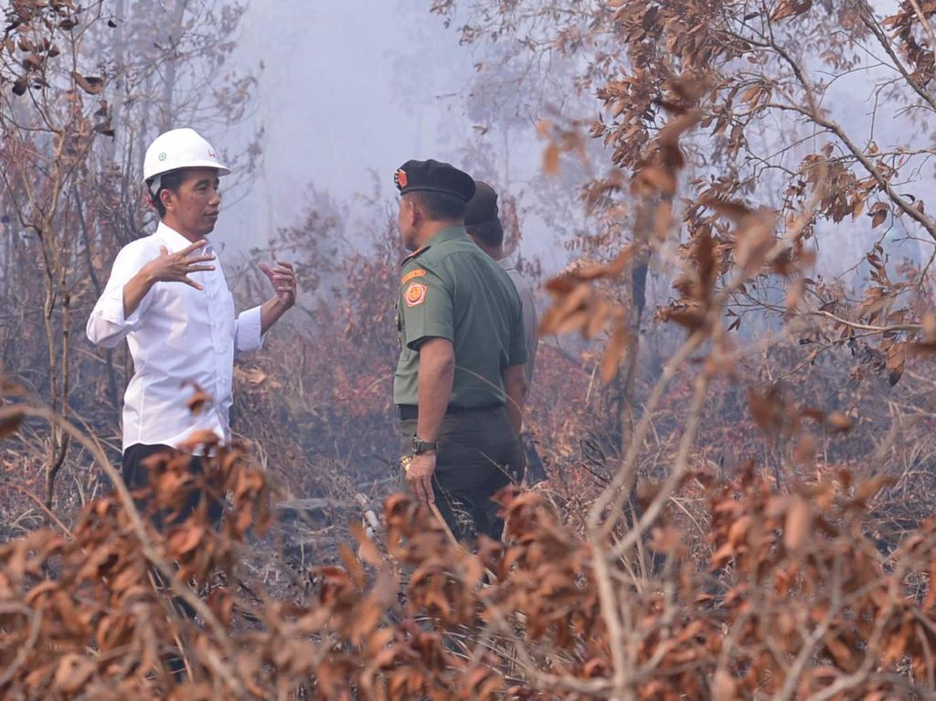 Jokowi Divonis Lawan Hukum, Pemerintah Diminta Cabut Kasasi