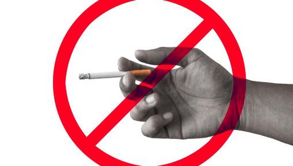 Studi: Ibu Merokok Saat Hamil, Risiko Anak Alami Kerusakan Ginjal Meningkat