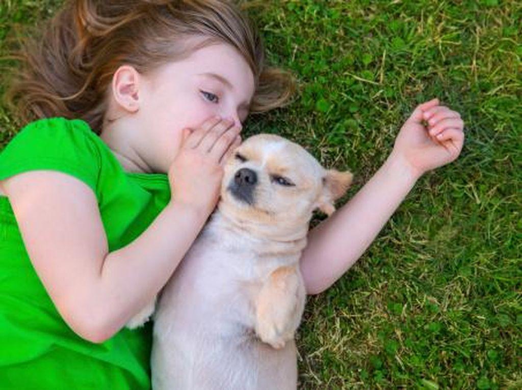 Bunda, Ini 5 Manfaat Memelihara Binatang bagi Anak