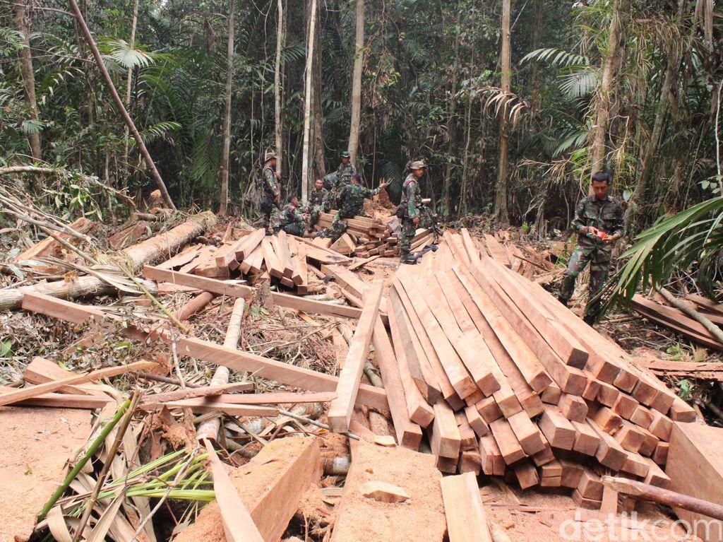 233 Batang Kayu Ilegal Diamankan Polres Aceh Timur
