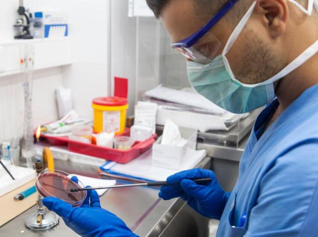 Terapi Stem Cell Bisa Atasi Banyak Penyakit, Kira-Kira Berapa Harganya?