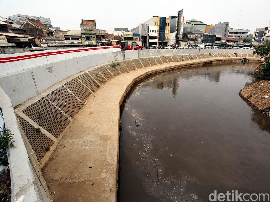 Gugatan Menggusur untuk Normalisasi Sungai ala Ahok Tak Diterima
