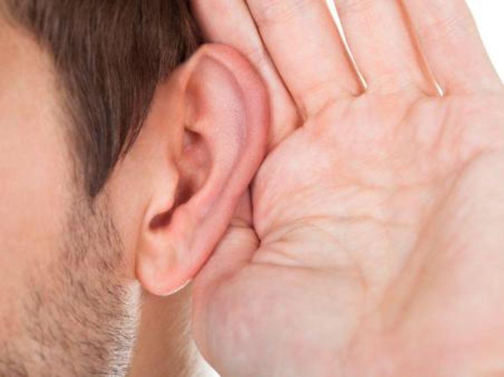 3 Tips Bebas Endapan Kotoran Telinga