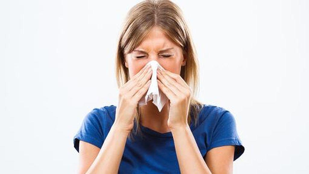Agar Tak Mudah Terserang Flu, Ini 7 Makanan Enak yang Baik Dikonsumsi