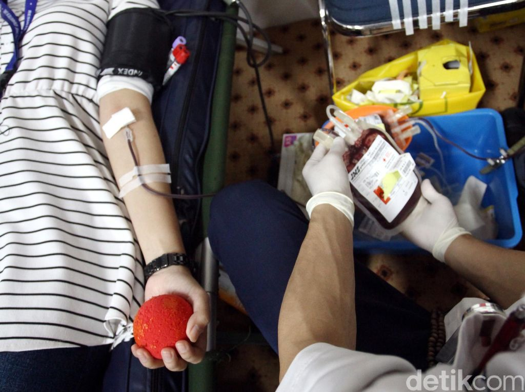 Habis Kena DBD, Berapa Lama Baru Boleh Donor Darah Lagi?