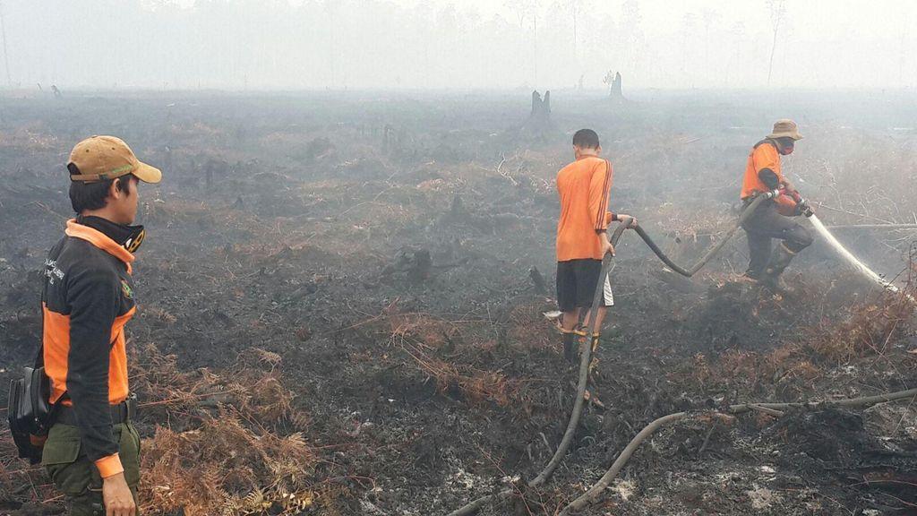 Temuan Baru: Ada Hubungan Kebakaran Lahan Gambut dengan Pilkada