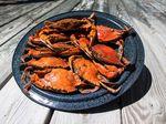 Bahasa Anak Jaksel: Kenapa The Crab Jalannya Is Miring?
