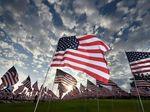 6 Hari Terjebak di Gurun Usai Kecelakaan, Wanita AS Selamat