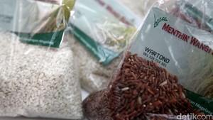 Konsumsi Nasi Merah, Cara Mudah dan Cepat Turunkan Bobot