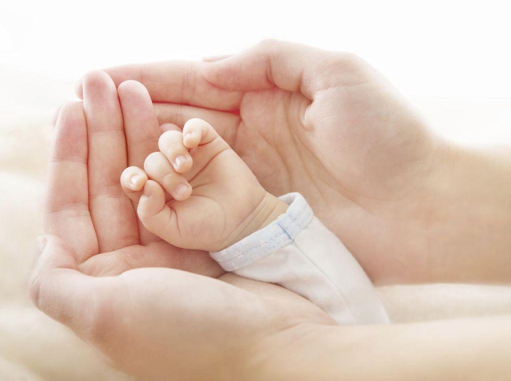 ASI EkslusifPenting untuk Perkembangan Otak Bayi Prematur