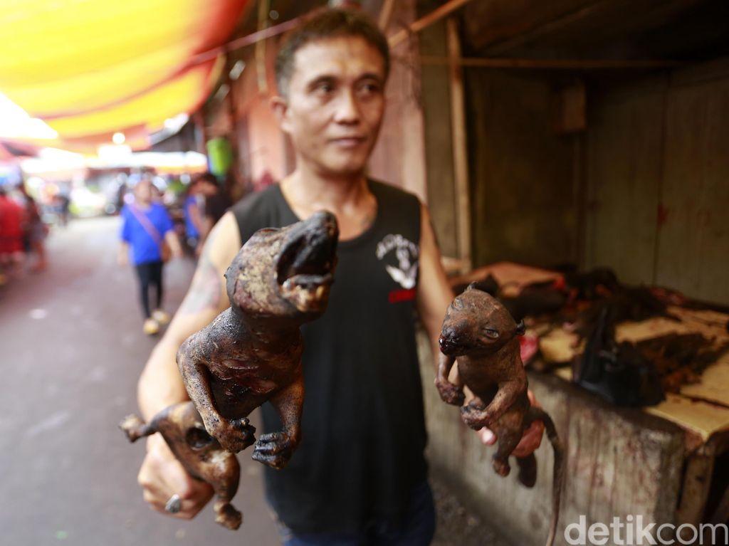 Anjing Dipukul dan Dibakar di Tomohon, Gubernur Sulut: Itu Tak Sadis