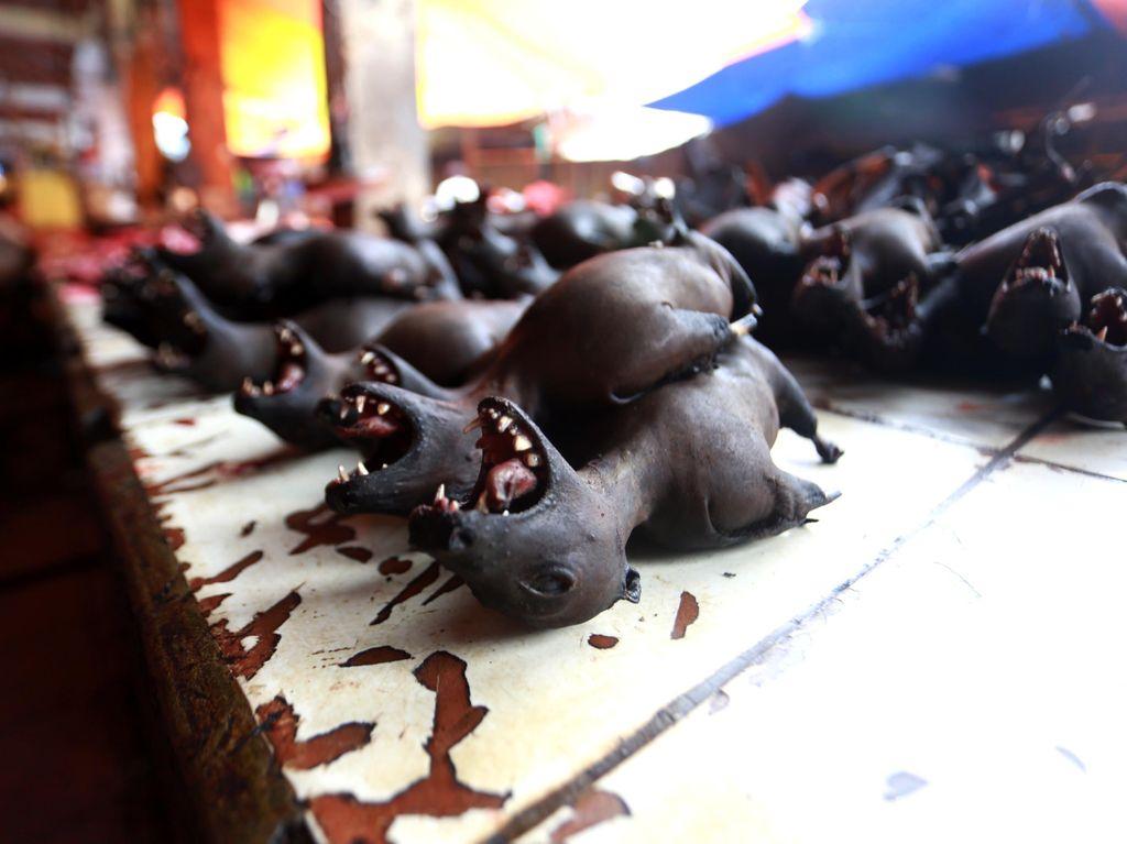 Foto: Anjing Hingga Ular Pun Dimakan di Tomohon