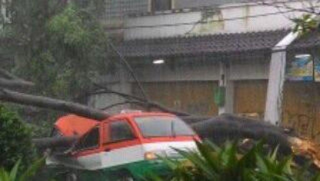 Pohon Beringin Tumbang Menimpa Tiga Mobil di Jamika Bandung