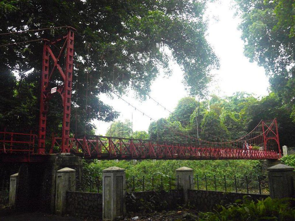 Awas, Kalau Lewat Jembatan di Kebun Raya Bogor Ini Bisa Putus Cinta
