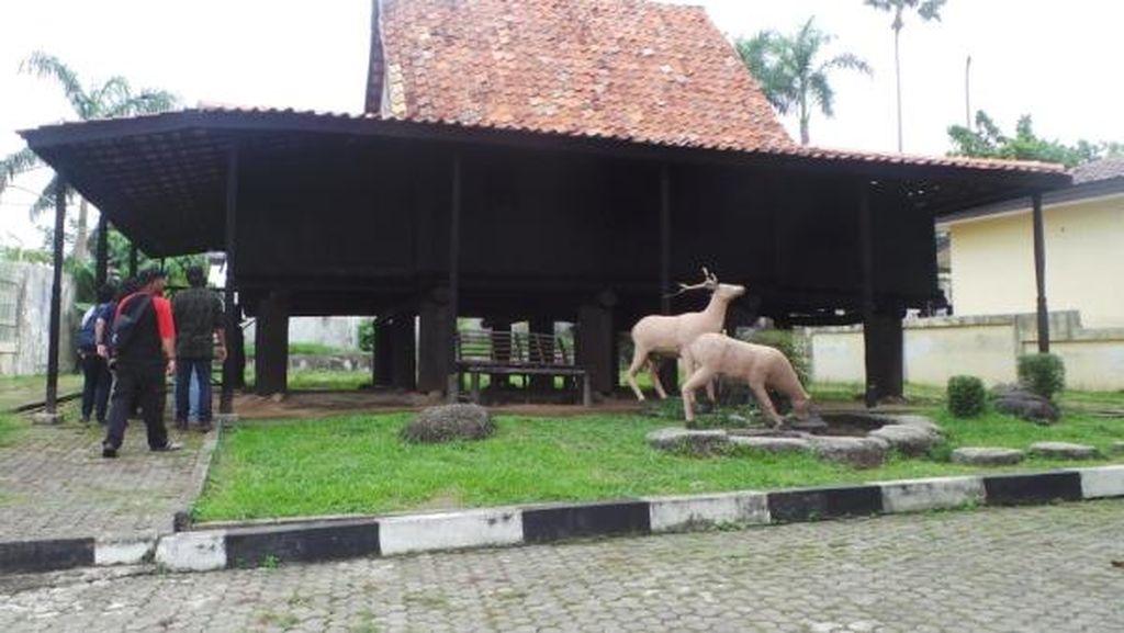 Lihat Gerhana di Palembang, Bisa Mampir ke Rumah Tahan Gempa