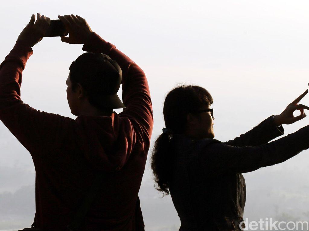 Tragis! Nekat Selfie Sama Beruang, Nyawa Melayang