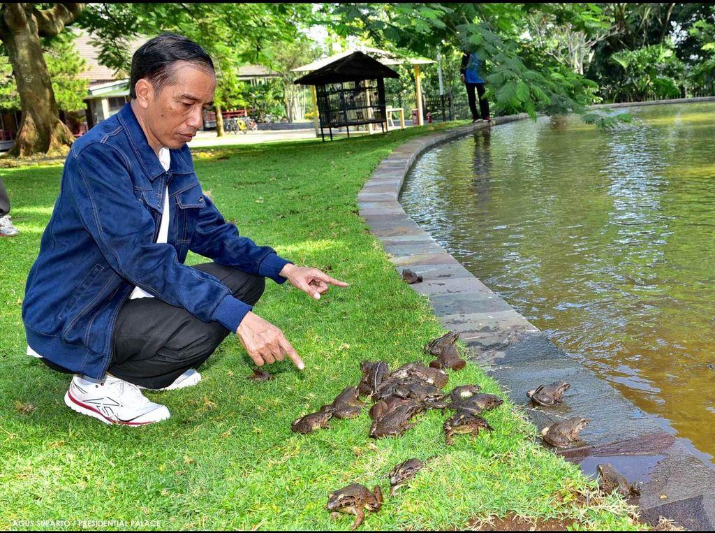 Kolam Kabinet Jokowi Terlalu Kecil Jadi Sebab Rekonsiliasi Terbatas?